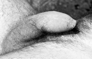 Zachary-hairy-model-foreskin-4skinboy-San-Francisco-17.jpg